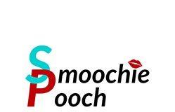 SP-logo250-2558c2e6