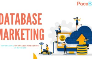 Database-Marketing-b61d1bf5
