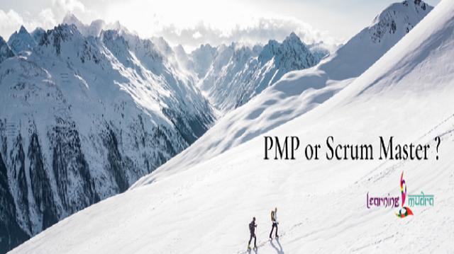 pmp or serum-bfb0c25b